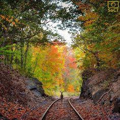 "Connecticut  ✨ Photographer  @landon_kane_ ✨  #ScenesofNewEngland  Pic of the Day  10.15.15 ✨  ----------------------------------------- ""Ambivalence""  #scenesofCT #connecticut_potd #norwichCT  #indianleap #yanticfalls  #fallinct  #nikon #nikontops  #connecticut_fallfoliage  #connecticut_wildlife..."