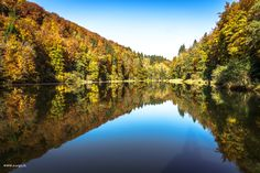 Egelsee | #egelsee #forest #autumncolors #heitersberg #aargau #Switzerland - take a look at my photoblog under www.raegi.ch or with a click on the pin Switzerland, Nature Photography, Urban, River, Mountains, Outdoor, Autumn, Pictures, Woodland Forest