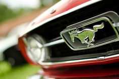 Ford Mustang hood sign.Most of my work is done with a nikon d7000 and my beloved nikkor 50mm eg vr