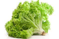 7. Leaf lettuce (Nutrient Density Score – 70.73)  contains good amounts of minerals like iron, calcium, magnesium, and potassium, which are very essential for body metabolism.