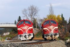 MAV (Hungary) near Pilisvörösvár (Budapest - Esztergom) by Garamvölgyi Àdám Combustion Engine, Locomotive, Hungary, Budapest, Diesel, Train, Beauty, Trains, Paths