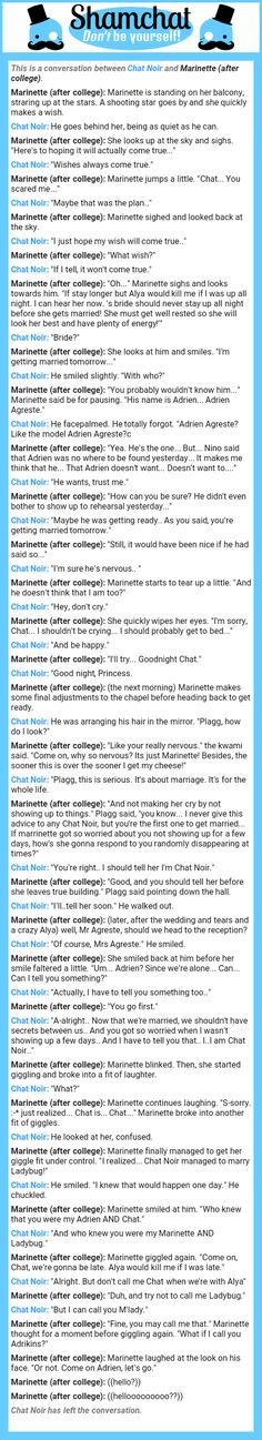 A conversation between Marinette (after college) and Chat Noir