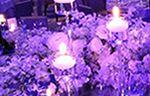 Details of Elegance. Weddings