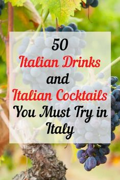 50 Italian Drinks That You Must Try in Italy - That Texas Couple Italy Travel Tips, Travel Destinations, Chianti Wine, Italian Cocktails, Things To Do In Italy, Italian Wine, Italian Coffee, Travel Inspiration, Travel Ideas