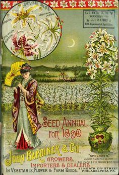 seedannualfor1891890john_0003.jpg (606×894)