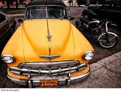 Los canarios combaten contra el olvido en Cuba - Conexión Cubana
