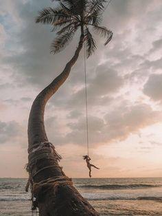 Palm tree rope swing dalawella beach sri lanka honeymoon in sri lanka Sri Lanka Photography, Travel Photography, Photography Ideas, Nature Quotes Adventure, Beach Adventure, Destination Voyage, Cabo San Lucas, Travel Couple, Beautiful Islands