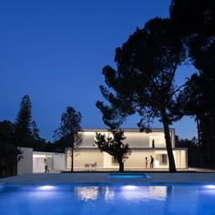 House between the pine forest by Fran Silvestre Arquitectos 01