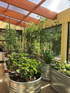 3 Ways to Heat Your Greenhouse for Free this Winter Cheap Greenhouse, Aquaponics Greenhouse, Backyard Greenhouse, Greenhouse Growing, Greenhouse Plans, Hydroponics, Greenhouse Wedding, Aquaponics Plants, Homemade Greenhouse
