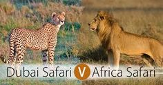 Image result for africa safari