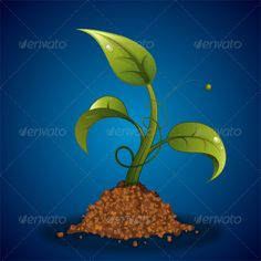 Young Green Sprout from the Ground with Water Drops, vector illustration