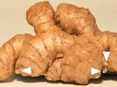 """Ginger root with growth buds.""  Wow! I get ginger from the farmers market and I want to grow it. Such great info in this article!"