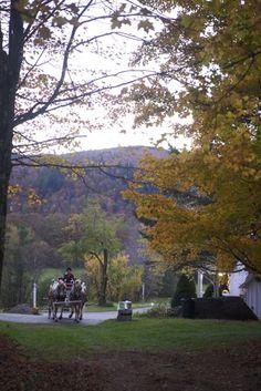 Maine Rustic Wedding - Mountain House Harvest Party #fall www.mountainhouseonsundayriver.com