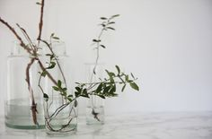 http://elisabethheier.blogspot.cz/2014/04/green.html