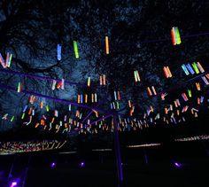Image for Bruce Munro: Light at the Arboretum. Minnesota Landscape Arboretum, Chaska, MN, USA