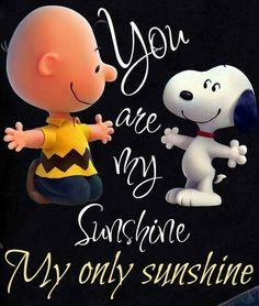 Charlie Brown and Snoopy Charlie Brown Quotes, Charlie Brown Und Snoopy, Charlie Brown Christmas, Good Morning Snoopy, Good Morning Quotes, Peanuts Cartoon, Peanuts Snoopy, Snoopy Hug, Snoopy Pictures