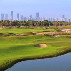 Need an excuse to visit Abu Dhabi? Maybe this photo of Saadiyat Beach Golf Club will inspire you. That is the Abu Dubai skyline in the background. #travel
