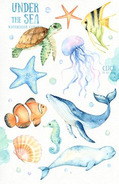 The set of high quality hand painted watercolor sea animals and elements. A clownfish, turtle, whale, seahorse, jellyfish and other animal illustrations are included in this set. Included 5 beautiful watercolor textures. Perfect for wedding invitations, greeting cards, quotes, posters,