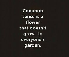 common sense-not so common.