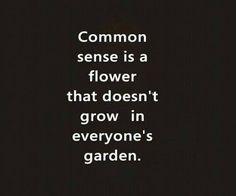 common sense-not so common.