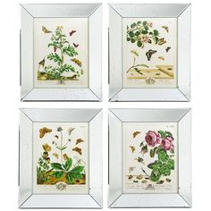 Two's Company Reflections Butterfly Wall Art Prints - Set of 4