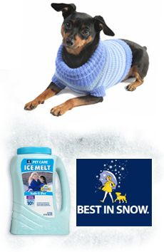 ASPCA | Cold Weather Tips for dogs and cats....