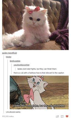 Immagine di aristocats, cat, and disney