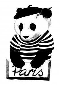 European Panda By Aniela Murphy