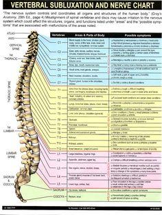 Sciatica+Anatomy+Diagram | helpful links genreal anatomy diagrams human anatomy muscle atlas ...