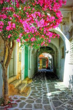 Street in Paroikia, Paros, Greece
