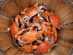 Steamed crabs by the bushel are a Maryland tradition.  Photograph by Edwin Remsberg