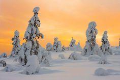 Ylläs on Pohjoismaiden paras ulkoilukohde Mount Rushmore, Mountains, Places, Nature, Travel, Naturaleza, Viajes, Destinations, Traveling