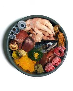 Dog Raw Diet, Raw Food Diet, Raw Food Recipes, Diet Recipes, Healthy Recipes, Raw Feeding For Dogs, Raw Pet Food, Dog Food Bowls, Cavapoo