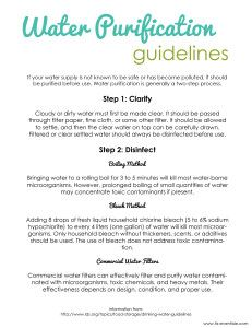 water purification guidelines