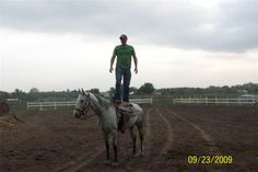 TRICK RIDING : GREAT HORSES & GREAT RIDERS