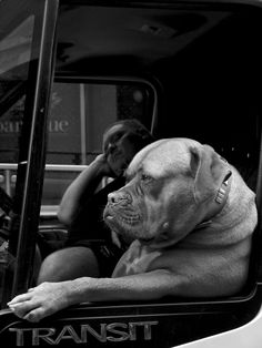Just Chillin' by street photographer Tom Rothery on UPSP