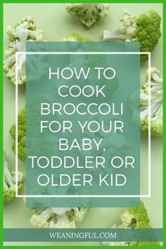 Are you ready to move beyond boiled or steamed broccoli? Have you been serving broccoli puree for your baby and want to find out how to cook it as finger food? Then this post will help you with quick and easy recipes and ideas on how to prepare it for your little one. If you're doing baby led weaning, then this post is equally helpful from 6 months +. Broccoli Puree, How To Cook Broccoli, Steamed Broccoli, Baby Meals, Kid Meals, Meals For One, Veggie Recipes, Baby Food Recipes, Easy Recipes