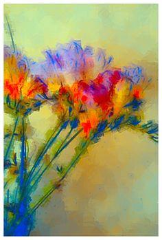 Iris via AurynCam, a unique way to capture the world.
