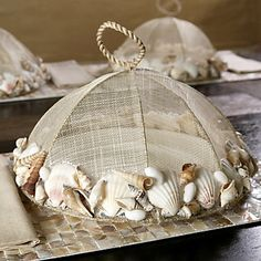 Food Cover with Shells