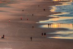 Morning walkers #BurleighHeads  www.burleightourism.com.au