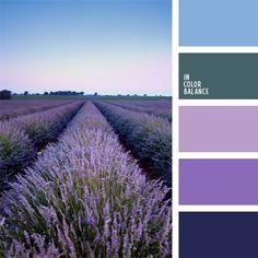 azul verdoso, celeste, color azul verdoso, color campo de lavanda, color celeste, color cerceta, color lavanda, colores del campo de lavanda, de color violeta, elección del color, morado, selección de colores para el hogar, violeta claro.