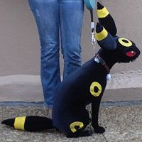 Apparently the dog isn't bothered at all, so this is a great cosplay! That's the closest you can get to a real umbreon