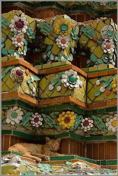 Le chat endormi dans un temple à Bangkok