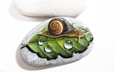 Hand Painted stone Snail on a leaf   Is Painted by Lefteris Kanetis https://www.facebook.com/L.kanetis.paintedstones