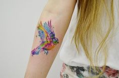 tattoo / aquarela / bird