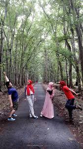 """Taman Nasional Alas Purwo adalah taman nasional yang terletak di Kecamatan Tegaldlimo dan Kecamatan Purwoharjo, Kabupaten Banyuwangi, Jawa Timur, Indonesia. Secara geografis terletak di ujung tenggara Pulau Jawa wilayah pantai selatan antara 8°26'45""""–8°47'00"""" LS dan 114°20'16""""–114°36'00"""" BT. Antara, Flora, Country Roads, Tours, Plants"""