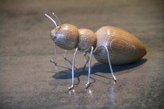 bois tourné, insecte, fourmi