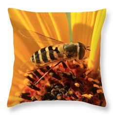 Flowers fly on prairie sunflower 2 Throw Pillow for Sale by Sverre Andreas Fekjan Pillow Sale, I Am Awesome, Photograph, Throw Pillows, Decoration, Flowers, Prints, Animals, Image