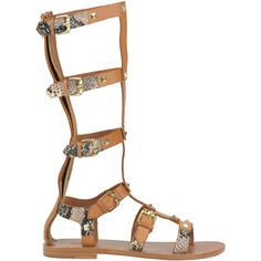 Ash Mykonos Gladiator Style Sandals ($149) ❤ liked on Polyvore featuring shoes, sandals, leather shoes, zip shoes, ash footwear, leather sandals and leather strap shoes