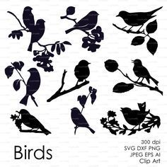 Three birds on the branch eps svg dxf ai jpg png by EasyCutPrintPD